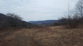 164 Beautiful Acres! - 164 Beautiful Acres with Views