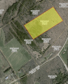 Secluded wooded lot off Eggleston HIll Road, Milford - Secluded wooded parcel