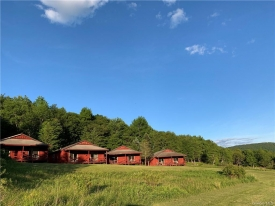 Cabins on the Catskills - Multiple Cabins