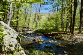 Catskills Streamfront with 3.1 Acres! -