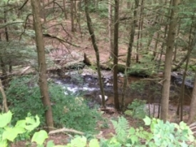 Streamfront Property in the Catskills - Streamfront Property in the Catskills