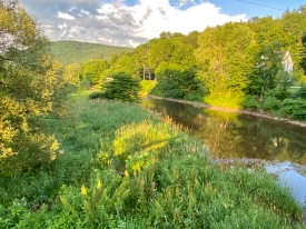 On the Delaware RIVER with Catskill MOUNTAIN VIEWS - LAND with MOUNTAIN and WATERFRONT views!